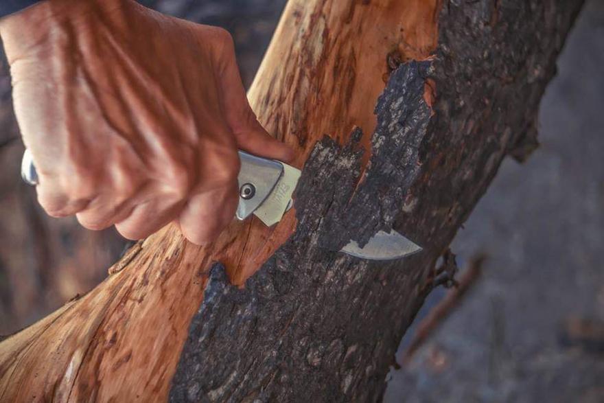 Μαριάννα Πούργαλη «23 δέντρα, μια ιστορία», Project Art 4 Mati