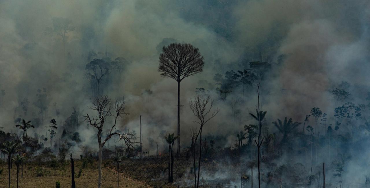 Φωτιά στον Αμαζόνιο από την περιοχή Άλτα Φορέστα