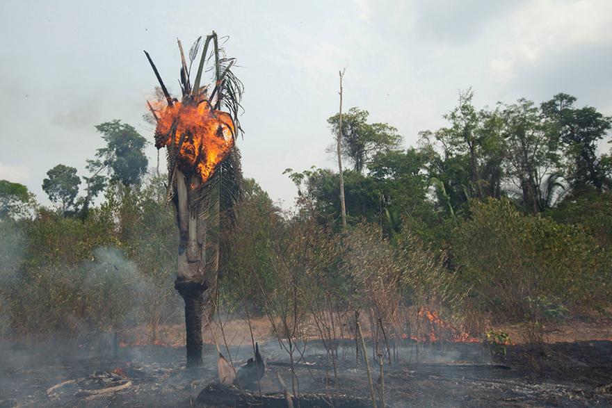 Φωτιά στον Αμαζόνιο - Εικόνα από το Πόρτο Βέλο