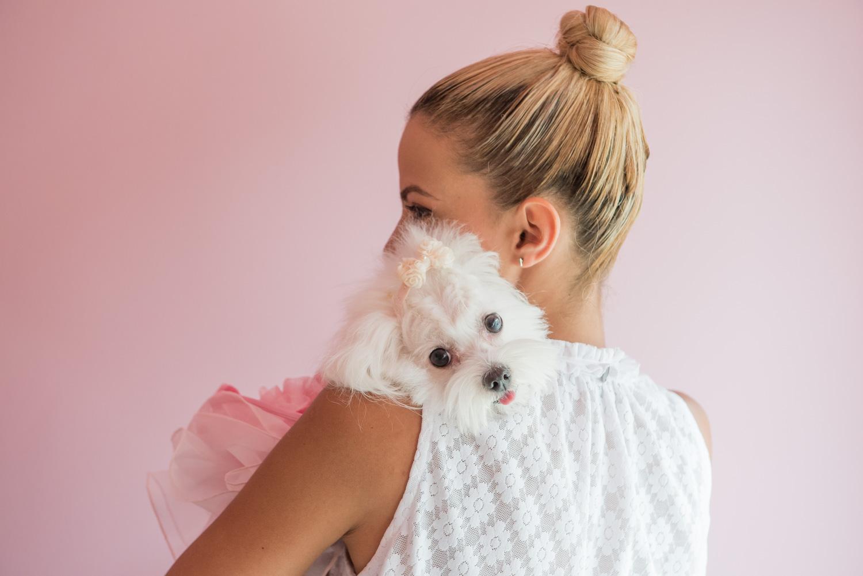 a8da4390e64b Haute couture για σκύλους. Κι όμως υπάρχει στο Μαρούσι!