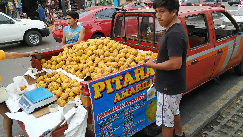 Pitaya, φρούτο του δράκου