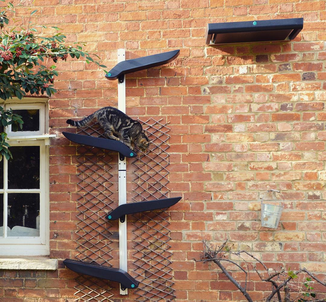 97a21dde5add Η υπέροχη σκάλα αναρρίχησης που σχεδιάστηκε για γάτες