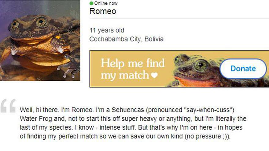 Δωρεάν dating διαδικτυακό σάιτ γνωριμιών